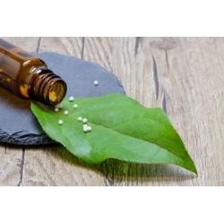 Úvodní povídání o homeopatii 15.11.2018 od 15:30